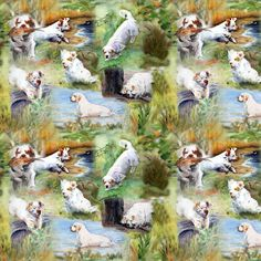 Clumber Spaniels 1 by Jan Irving fabric by erinrac on Spoonflower - custom fabric Clumber Spaniel, Spaniels, Custom Fabric, Spoonflower, Fabrics, Gift Wrapping, Colorful, Printed, Wallpaper