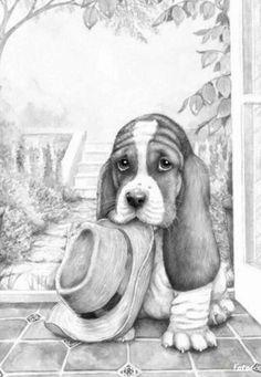 drawings - animal art - dogs - pencil drawings - portrait illustration - pencil portrait