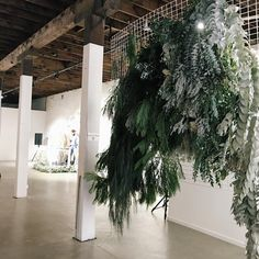 "TKCS | PERTH on Instagram: ""CASCADING.  Last nights greenery feature we created for Jimmy + Tee #jtttwedding at @psartspace #keenongreen #TKCS #tiffanykealcreativestudio"""