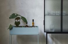 The Plant Box by ferm LIVING is so much more than its name would suggest. Elegant and timeless, this box sits on delicate legs and can be used for everything from plants to books to discreet storage. Blue Plants, Plant Box, Holiday Essentials, Design Bestseller, Scandinavian Interior Design, Scandinavian Living, Nordic Design, Royal Design, Dusty Blue