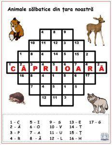 Cuvinte codificate - Animale sălbatice din țara noastră Preschool Writing, Preschool Learning, Preschool Activities, Teaching, Visual Perceptual Activities, School Frame, Worksheets For Kids, After School, Learning Spanish