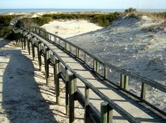 Cumberland Island National Seashore, GA