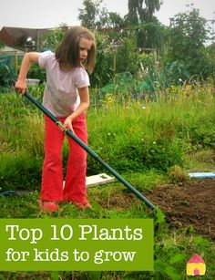 Top 10 easy plants for kids to grow :: kids gardening projects