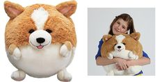 Squishable Corgi, $42