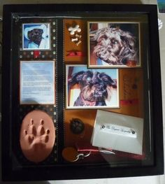 dog shadow box (i love the paw print!)