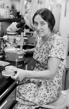 Lynn Margulis | Lynn Alexander | 1938-2011 | Biologist and University Professor in the Department of Geosciences at the University of Massachusetts Amherst. She is best known for her theory on the origin of eukaryotic organelles, and her contributions to the endosymbiotic theory, which is now generally accepted for how certain organelles were formed. She showed that animals, plants, and fungi all originated from Protists.