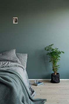 Lady 6352 Evening Green Lady 6352 Evening Green The post Lady 6352 Evening Green appeared first on Slaapkamer ideeën. Bedroom Orange, Bedroom Colors, Bedroom Green, Bedroom Interior, Home, Interior Design Living Room, Bedroom Inspirations, Modern Room, Home Bedroom