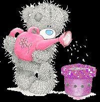 Animated Gif by Miranda Wassing Teddy Bear Images, Teddy Pictures, Bear Pictures, Cute Pictures, Awareness Ribbons, Cancer Awareness, Gifs, Tatty Teddy, Cute Bears
