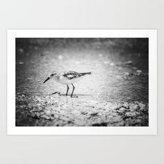 little birdie Art Print by blumwurks | Society6