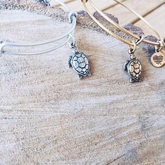 This @alexandani sea turtle bangle sure is cute BUT the meaning behind the charm is so much cuter! |  instagram : @happytiannavibes | Alex and Ani Global Brand Ambassador | sea turtle | turtle | charm | bangle |charity by design |