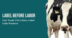 Label before Labor: Fair Trade USA's Dairy Label Fails Workers Harvest Market, Human Rights Organizations, Workers Rights, Policy Change, Usa News, Fair Trade, Workplace, Fails, Leadership