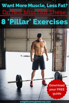 Want More Muscle, Less Fat? Don't Miss Out These Exercises - FREE 25 page report by Weight Training Is The Way. Gain muscle, lose weight, develop a better body...by focusing on the 8 'pillar' compound exercises...squats, deadlifts and more. Click through and then download the free guide :-)