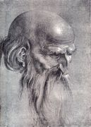 Head Of An Apostle Looking Downward - Albrecht Durer - www.albrecht-durer.org Artist Study , Inspiration and Resources for Art School Students and Mixed Media Artists on How to Draw Faces /Portraits  for CAPI ::: Create art Portfolio Ideas at milliande.com