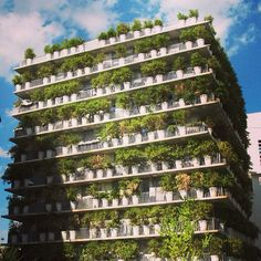 Designer Edouard François said the 380 potted bamboo plants of the Flower Tower apartments in Paris were selected for the noise created when the leaves rustle in the wind. France City, Paris France, Edouard Francois, Vertical Forest, Vertical Gardens, Tower In Paris, Bamboo In Pots, Tower Apartment, Flower Tower