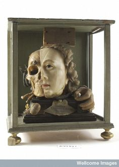 A Vanitas tableau of a life sized head, on one side resembling Queen Elizabeth I, the other half a skull with attendant insects and reptiles...