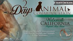 2 Days of Animal Communication: Exploring Animal Communication with Rescue Animals and Animals As Our Soulmates Delve Deeper, in Support of Rescues  In this two-day workshop, Anna will help students explore all avenues of Animal Communication with focus on supporting rescue animals. Students will grow in their intuition, their ability to observe and to discern messages in all their formats. Beyond this, the realization that our animals have a life's purpose just as we do will come to light.