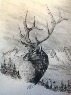 Elk Drawing, Drawing Sketches, Painting & Drawing, Pencil Drawings Of Animals, Animal Sketches, Hirsch Tattoos, Antler Tattoos, Deer Hunting Tattoos, Pyrography Patterns