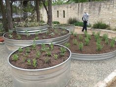 tanks: Traditionally for livestock, they make amazing raised beds for vegetables, herbs and succulents.stock tanks: Traditionally for livestock, they make amazing raised beds for vegetables, herbs and succulents. Raised Garden Beds, Raised Beds, Raised Gardens, Galvanized Stock Tank, Galvanized Planters, Stock Tank Pool, Garden Planters, Garden Projects, Garden Inspiration