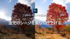 フォトレタッチの極意17:逆光のシーンを美しく仕上げる – Adobe Creative Station