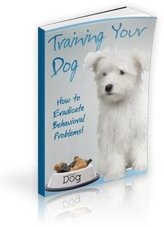 Healthy food for dogs We Love 2 Promote http://welove2promote.com/product/healthy-food-for-dogs/    #onlinebusiness