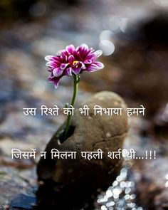 Quotes and Whatsapp Status videos in Hindi, Gujarati, Marathi Dosti Quotes In Hindi, Friendship Quotes In Hindi, Hindi Quotes Images, Hindi Shayari Love, Hindi Quotes On Life, My Life Quotes, Crazy Quotes, Shayari Status, Inspirational Quotes In Hindi