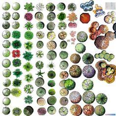 나무 소스 (jpg, png) :: archive23