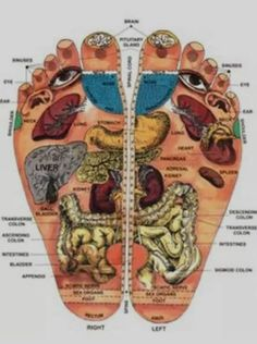 Shiatsu Massage – A Worldwide Popular Acupressure Treatment - Acupuncture Hut Reflexology Massage, Foot Massage, Foot Reflexology Chart, Massage Body, Neck Massage, Facial Massage, Health Tips, Health And Wellness, Health Fitness