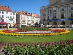 Gardens in Kalisz, Poland