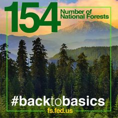 """""""USDA's manages and protects 154 national forests and 20 grasslands in 43 states and Puerto Rico. Agriculture Facts, Discover The Forest, Fun Fact Friday, Outdoor Education, Forest Service, Parks And Recreation, National Forest, Natural World, Forests"""
