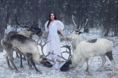 Harmony with nature in the portraits of girls with wild animals 15