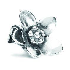 Vyjádři svoji lásku rozkvetlou kytičkou.