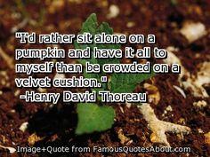 I'd rather sit alone on a pumpkin