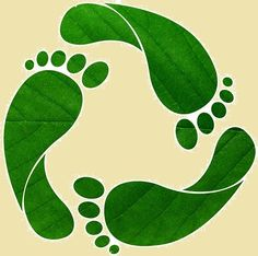Have you ever wondered how much resources do we use? This is answered using the Ecological Footprint. All the resources we use for our needs comes either by using natural resources directly or by using these resources indirectly. Capricorn Man, Science Fair, Ecology, Plant Leaves, Earth, Nature, Plants, Natural Resources, Footprints