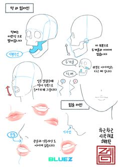 Body Reference, Drawing Reference Poses, Anatomy Reference, Design Reference, Drawing Tips, Art Reference, Drawing Techniques, Anatomy Sketches, Art Sketches