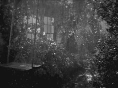 Image result for dark rainy fall night gif