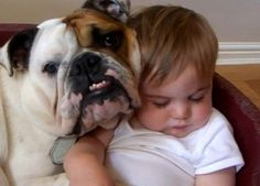 One contented child and dog