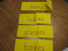 Singular & Plural Nouns Practice~ Use markers to turn sentence strips into an easy test prep activity.  #singular #plural #noun