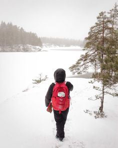 Hiking in Finnish forest near Helsinki in January. Travel Alone, Helsinki, Finland, National Parks, January, Hiking, Winter, Nature, Solo Travel