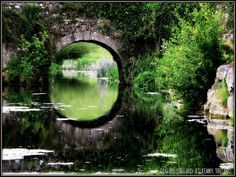 Pond. Maybe in my dream estate I can have a cool bridge like this