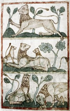 Medieval Bestiary : Lion Gallery  I find the limited palette of raw sienna and muted green to be particularly appealing here!