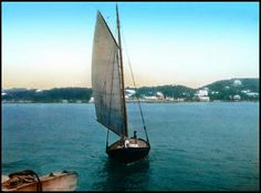 Sailing into Port at Hamilton Harbour -- A Picture of Sea Life in Old Bermuda by Okinawa Soba, via Flickr