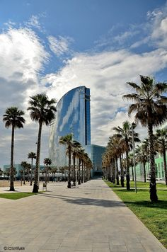 Between the palm trees - #Barcelona, #Catalunya. http://www.spain-holiday.com/Barcelona-city/articles