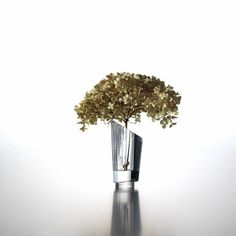 It could also be called a little piece of art, which was given a function. Our Limited edition vase, with its spectacular glass quality, is heavy enough to counterbalance a branch, as well as a heavy flower stem, despite its size. See more via www.verapu.re. #design #decor #homedecor #interior #tabletop © Alexander Bayer.