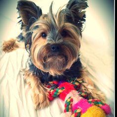 Tucker, Winter 2012 look!