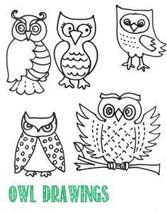 Owl Drawing Guide