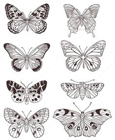 Buy Hand Drawn Butterflies by Artness on GraphicRiver. Set of vector hand drawn butterflies on a white background. Zip file contains fully editable vector file, transp. Butterfly Sketch, Butterfly Tattoo Designs, Butterfly Art, Monarch Butterfly, Butterfly Wing Pattern, Butterfly Drawing Images, Butterfly Tattoo On Hand, Vintage Butterfly Tattoo, Butterfly Tattoos Images