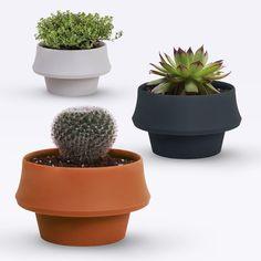Shop by Pizzolorusso — FoldPot 3pcs Set ~ Growing Plant Pots