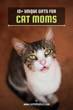Multiple occasions celebrate women all over the world. Cat moms, especially, deserve love and appreciation for keeping up with their beloved pets' demands and lavishing them with unconditional love and care no matter how busy they are. Here are ten gift ideas to surprise the cat mom in your life. #cat #cats #catowner #catlover #catspeople #catgift #gift #catmom #catlady #womensday #mothersday #catmomgift Cat Lover Gifts, Cat Gifts, Cat Lovers, Cat Water Fountain, Interesting Topics, Cat Names, Cat Health, Unconditional Love, Cat Lady