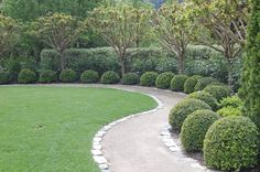 A decomposed granite path lined with boxwoods and dwarf catalpa trees (Catalpa nana), photographed just after a heavy rainstorm (note the lack of mud). Designed by Brad Eigsti of Imprints Landscape Architecture.-- Hardscaping 101: Decomposed Granite | Gardenista