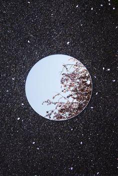 Looking up, looking down, Its all beautiful. Reflections photography bySebastian Magnani